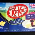 blueberrycheese01