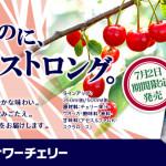 kirin-sour-cherry-chuhai-1